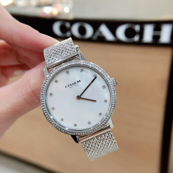 Coach Stainless-Steel Mesh Audrey Womens Watch  #14503358 (產品編號: S000373)